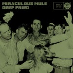 COVER_ Miraculous Mule LOW