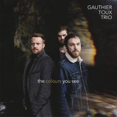 GAUTHIER TOUX TRIO - THE COLOURS YOU SEE