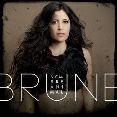 BRUNE - SOMBRE ANIMAL